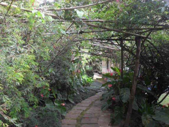 Sitio Teresópolis - Foto 20