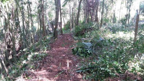 Terreno residencial à venda, Três Córregos, Teresópolis. - Foto 13