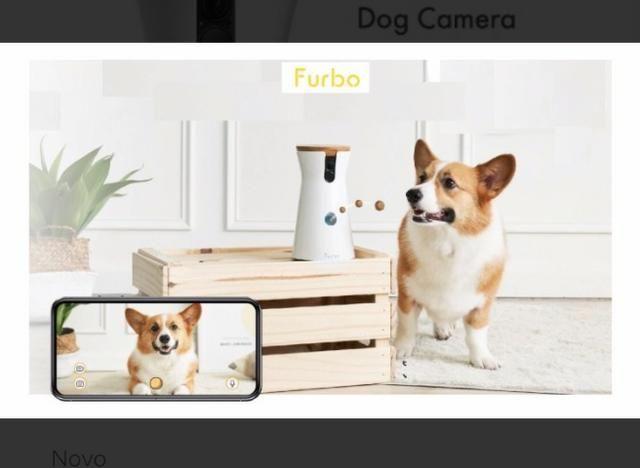 Furbo - Câmera para Cachorro - Foto 3