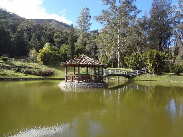 Sítio rural à venda, Córrego das Pedras, Teresópolis. - Foto 4