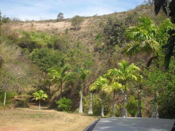 Sítio rural à venda, Bonsucesso, Teresópolis. - Foto 17