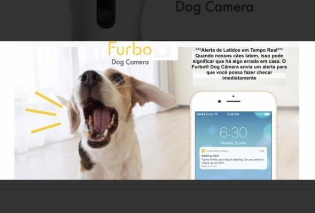 Furbo - Câmera para Cachorro - Foto 5