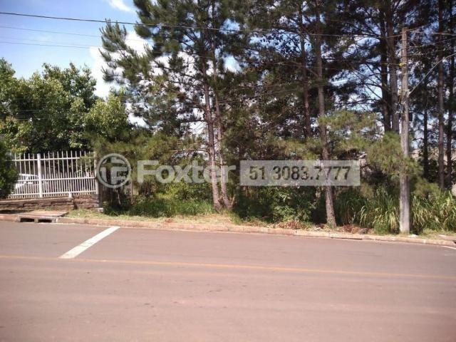 Terreno à venda em Pinheiros, Estrela cod:188535