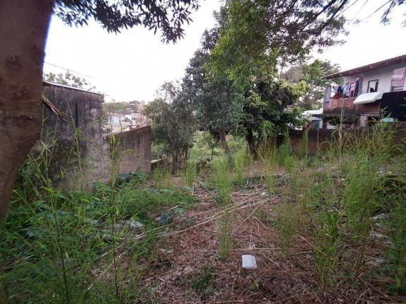 Terreno residencial à venda, rondônia, novo hamburgo. - Foto 5