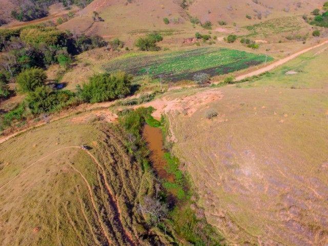 Lorena SP Fazenda 230 Hectares à venda em, Rodovia Dutra km 45 Cód. 001-LOR-001 - Foto 17