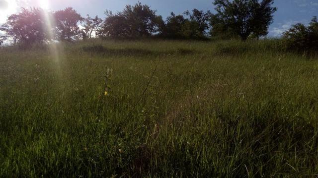 Fazenda em Baixo Guandu ES -Barato (entr +parc. anuais) - Foto 3