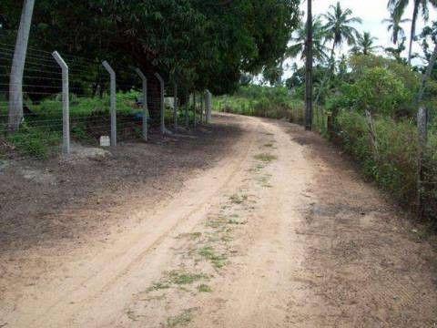 (Virgínia) Oportunidade única Terreno em Jauá - Foto 3