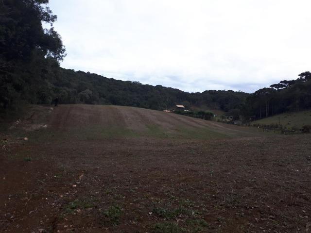 Chacara com 36.000m² juruqui - Foto 8