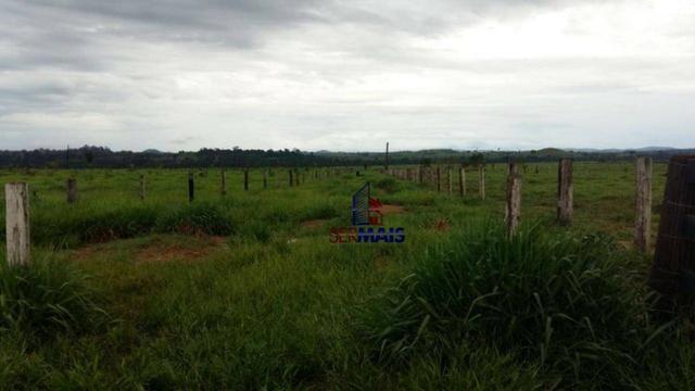 Fazenda Localizada na cidade de Buritis-RO - Foto 7