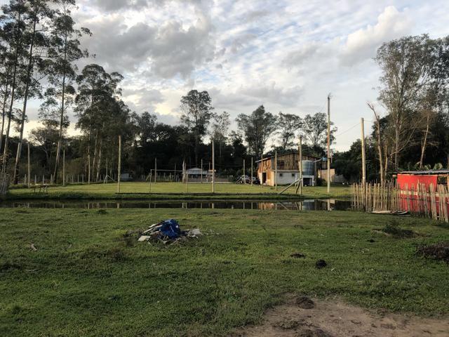 Sítio de 2,5 hectares - Foto 10