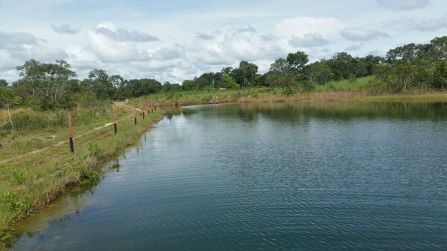 Sitio 120 hectares em Livramento - Foto 5