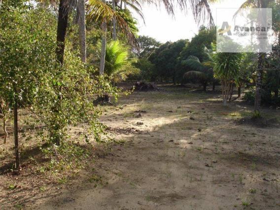 Chácara com 3 dormitórios à venda, 20000 m² por R$ 500.000,00 - Carne de Vaca - Goiana/PE - Foto 7