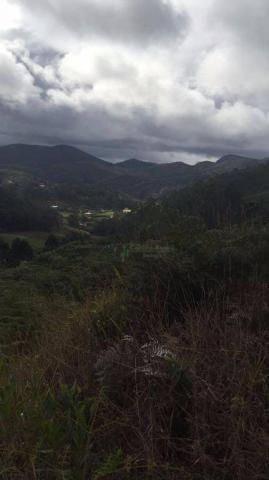 Terreno residencial à venda, Vieira, Teresópolis. - Foto 4