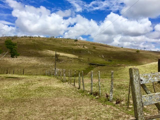 Fazenda em Boa Nova BAHIA com 167he - Foto 4