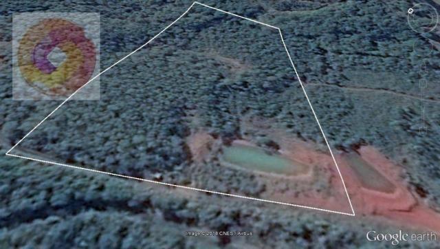 Chácara  à venda, 23000 m² por R$ 180.000 - Palmerinha - Campina Grande do Sul/PR - Foto 12