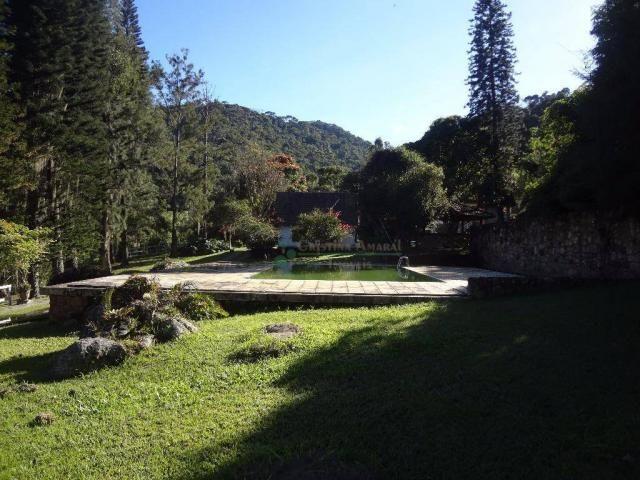Sítio rural à venda, Córrego das Pedras, Teresópolis. - Foto 7