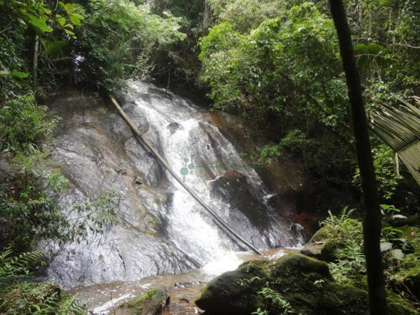 Sitio com 780.000 m² por R$ 1.150.000 - Ponte Nova - Teresópolis/RJ - Foto 19