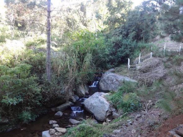 Sítio rural à venda, Córrego das Pedras, Teresópolis. - Foto 14