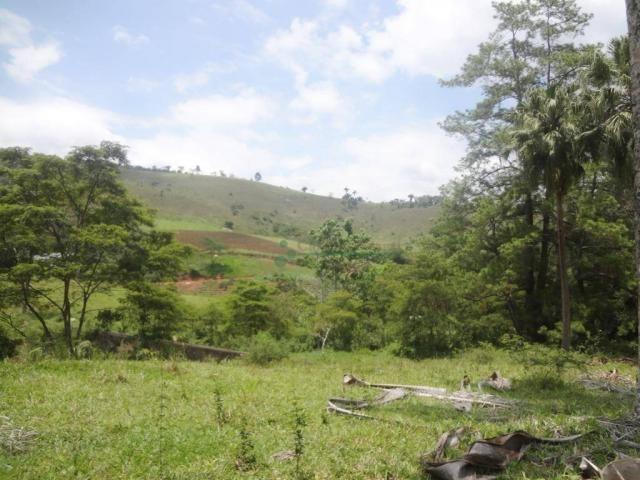 Sitio com 780.000 m² por R$ 1.150.000 - Ponte Nova - Teresópolis/RJ - Foto 9