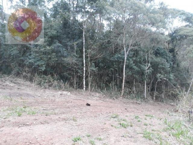 Chácara  à venda, 23000 m² por R$ 180.000 - Palmerinha - Campina Grande do Sul/PR - Foto 8