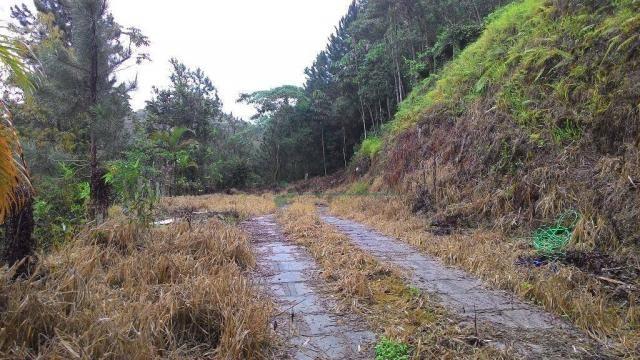 Terreno residencial à venda, Fazenda Boa Fé, Teresópolis. - Foto 2