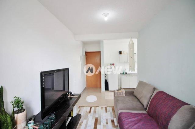 Apartamento com 2 dormitórios à venda, 42 m² por r$ 159.600 - operário - novo hamburgo/rs - Foto 3