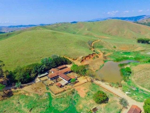 Lorena SP Fazenda 230 Hectares à venda em, Rodovia Dutra km 45 Cód. 001-LOR-001 - Foto 10