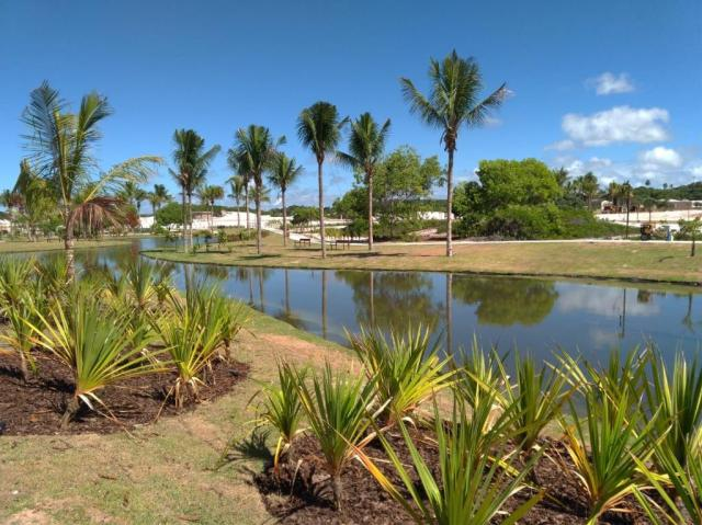 Terreno à venda, 450 m² por R$ 300.000 - Sauipe - Foto 18