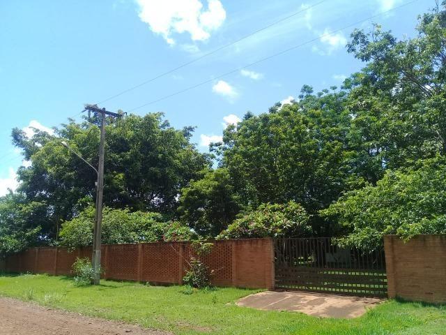 Chácara 08 hectares -próximo de C.Grande -Preço de 1.200.000 por 890.000 - Foto 2