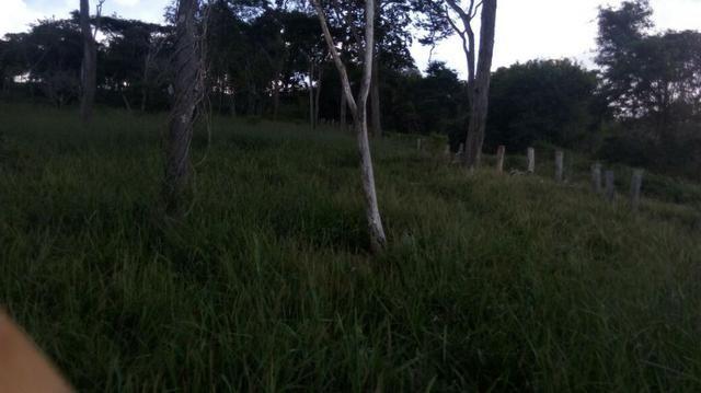 Fazenda em Baixo Guandu ES -Barato (entr +parc. anuais) - Foto 5