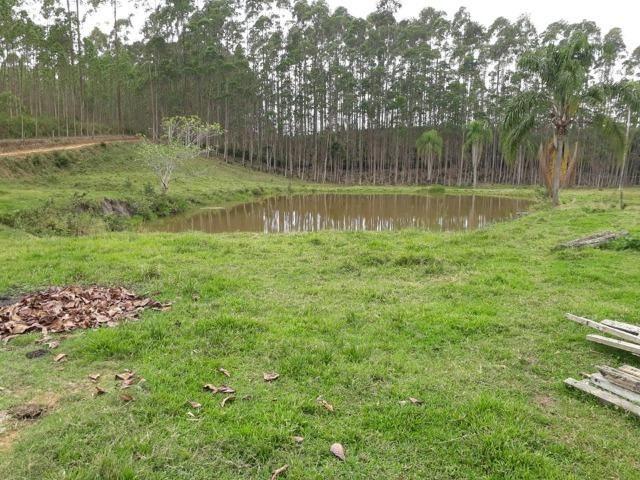 Linda área com 10 hectares a venda em Tijucas SC!!! - Foto 8