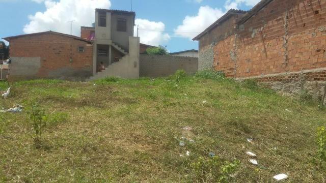 Um terreno em muritiba bahia tem 12 de lag por 22 de conpri - Foto 4