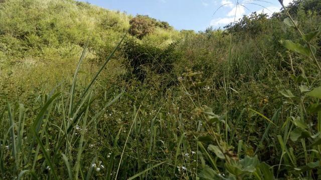 Fazenda em Baixo Guandu ES -Barato (entr +parc. anuais) - Foto 9