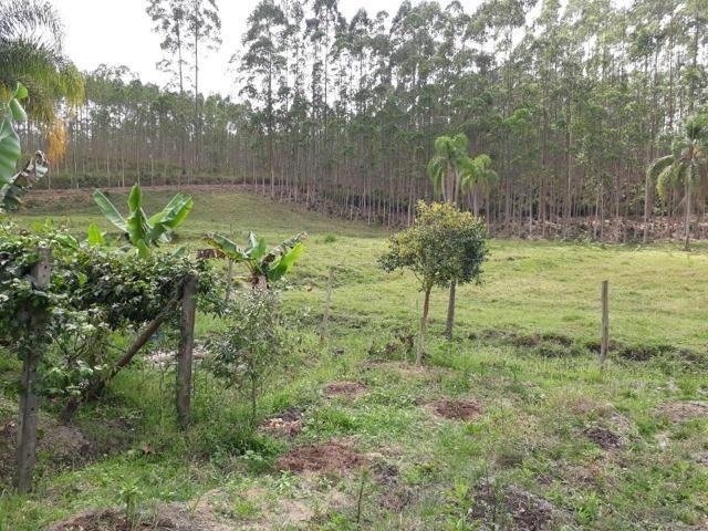 Linda área com 10 hectares a venda em Tijucas SC!!! - Foto 7