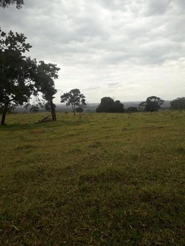 Chácara 30 min de Goiânia - Foto 2