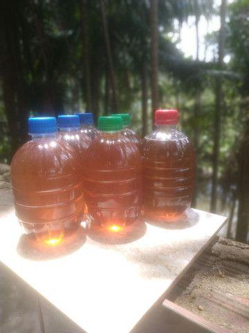 Mel de abelha puro 700 gramas - Foto 4