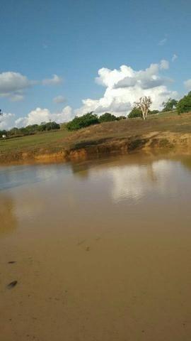 Fazenda em Ribeira do Pombal - Foto 13