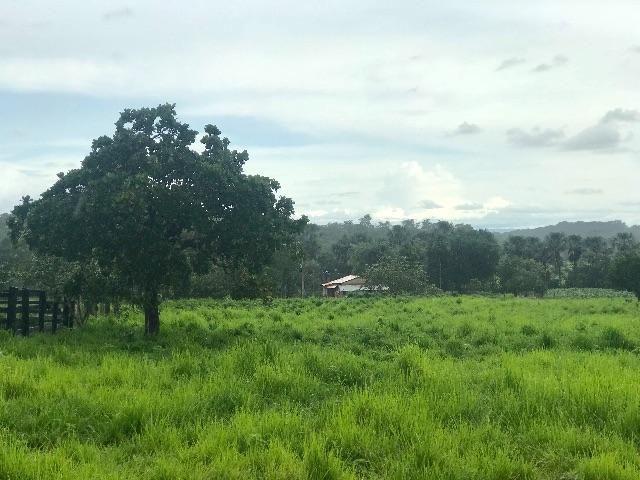 Fazenda em Pugmil to/ 8 km da cidade