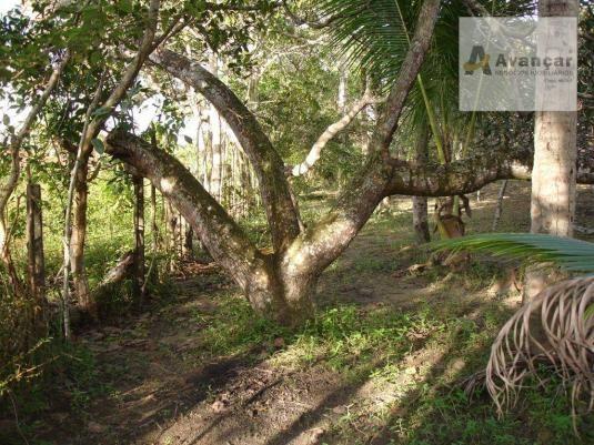 Chácara com 3 dormitórios à venda, 20000 m² por R$ 500.000,00 - Carne de Vaca - Goiana/PE - Foto 13