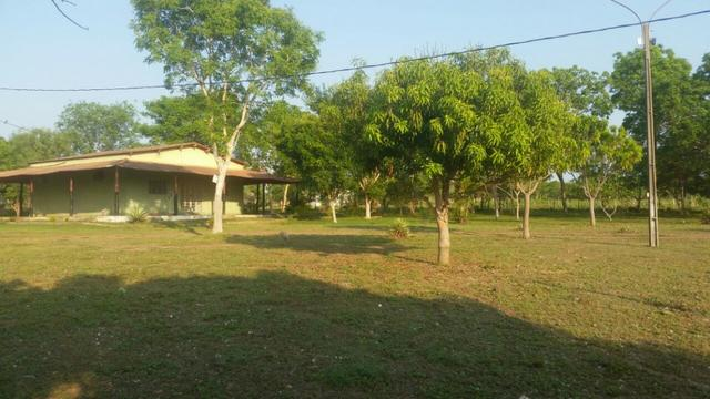 Sitio 120 hectares em Livramento