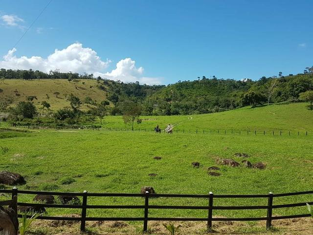 Vendo fazenda em Jiquiriçá ba - Foto 4