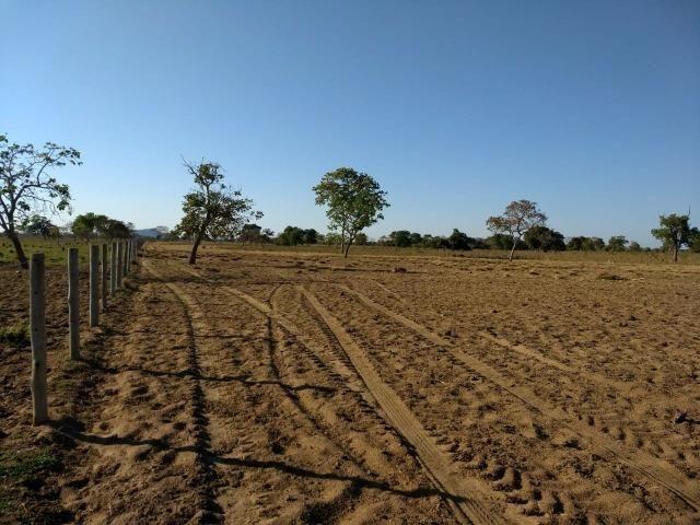 Fazenda Cocalinho MT - Foto 3