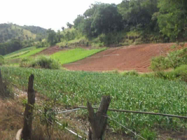 Sítio rural à venda, Venda Nova, Teresópolis. - Foto 14
