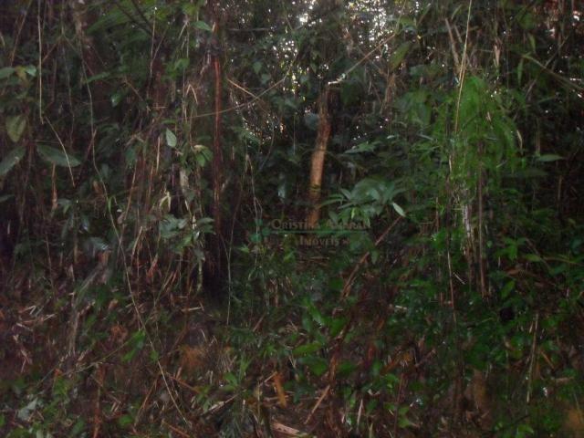 Terreno residencial à venda, Vargem Grande, Teresópolis. - Foto 7