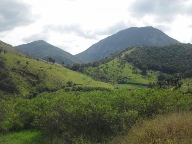 Sítio rural à venda, Venda Nova, Teresópolis. - Foto 20