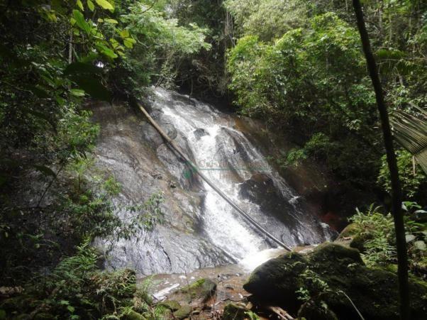 Sitio com 780.000 m² por R$ 1.150.000 - Ponte Nova - Teresópolis/RJ - Foto 18