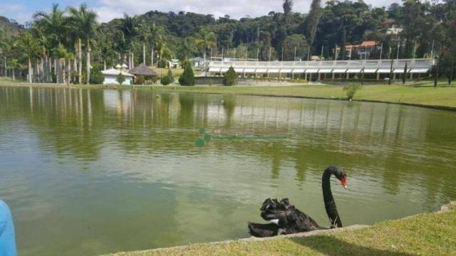 Terreno residencial à venda, Vargem Grande, Teresópolis. - Foto 14