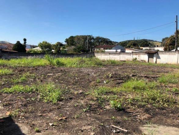 Terreno para alugar, 1500 m² por R$ 12.000,00/mês - Maria Paula - São Gonçalo/RJ - Foto 10