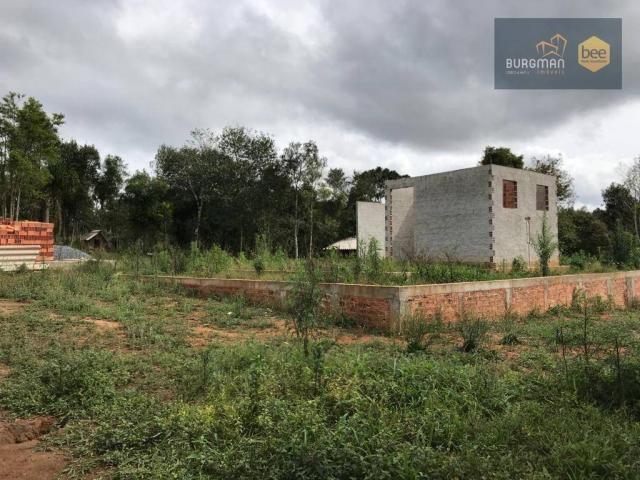 Chácara à venda, proximo a Igreja do Rosário em Colombo - PR - Foto 13
