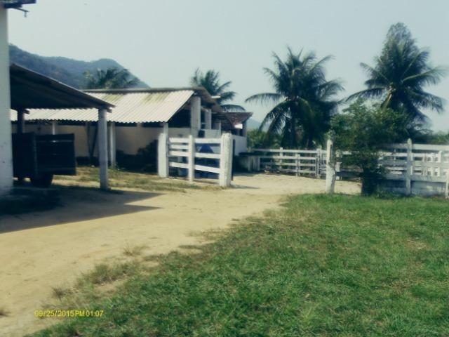 Linda fazenda com nascente própria em Jaconé, Maricá - Foto 13